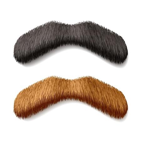 bigote: Bigotes falsos Vectores