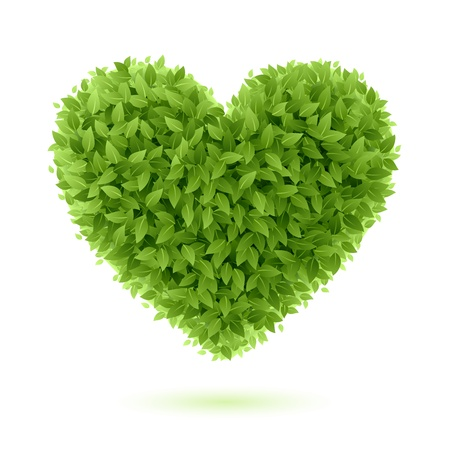 green eco: Heart symbol in green leaves Illustration