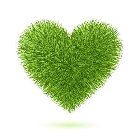 coeur sant�: Le symbole du coeur herbe Illustration