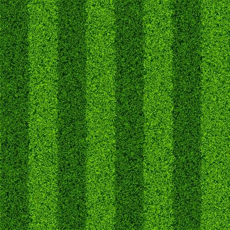 landscape garden: Green grass field. Seamless illustration. Illustration