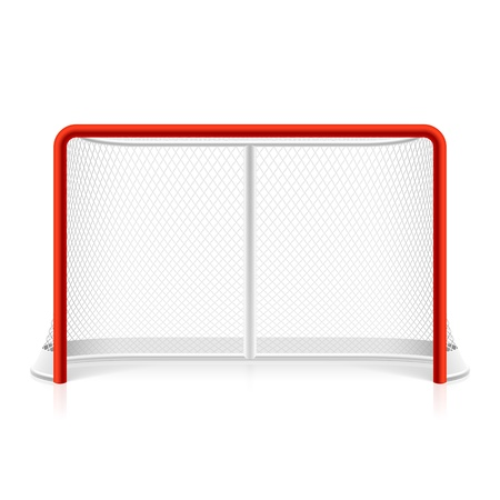rink: Ice hockey net