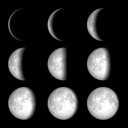 noche y luna: Fases de la Luna Vectores