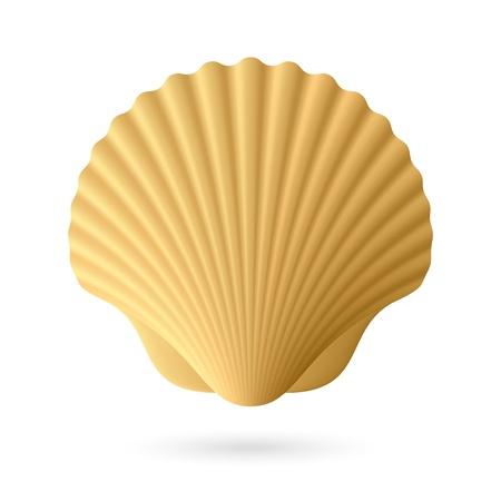 ホタテガイ貝殻 写真素材 - 16962560