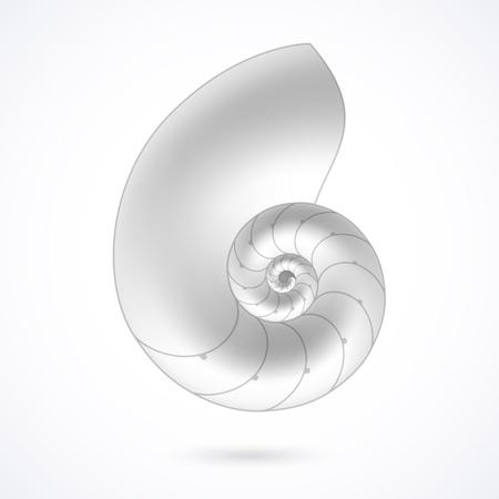 Nautilusschelp Vector Illustratie