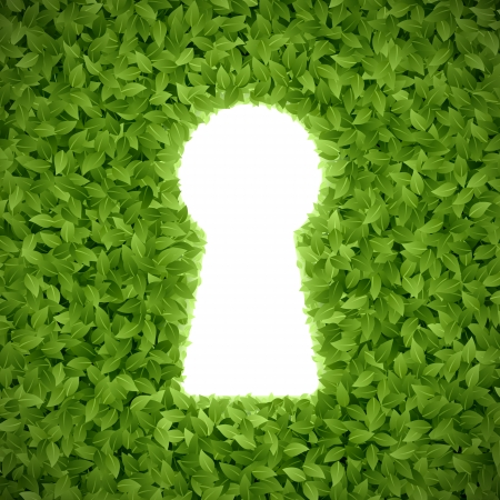 empty keyhole: Green leaves with keyhole Illustration