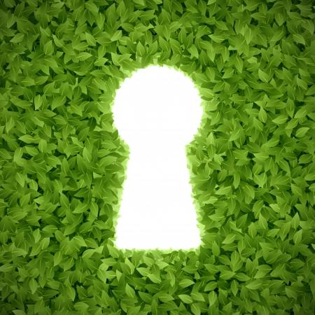 Groen blad met sleutelgat
