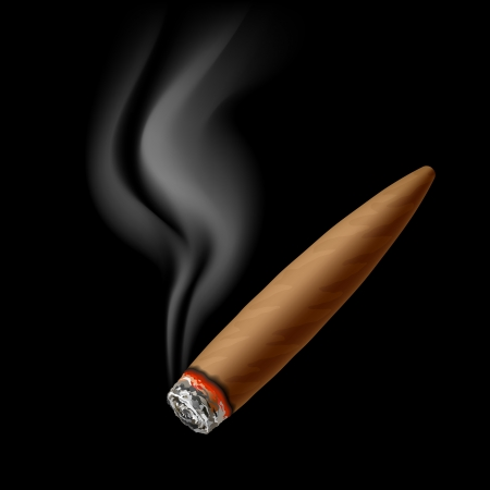havana cigar: Cigar with smoke