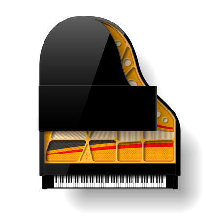 view from the above: Black grand piano with open top