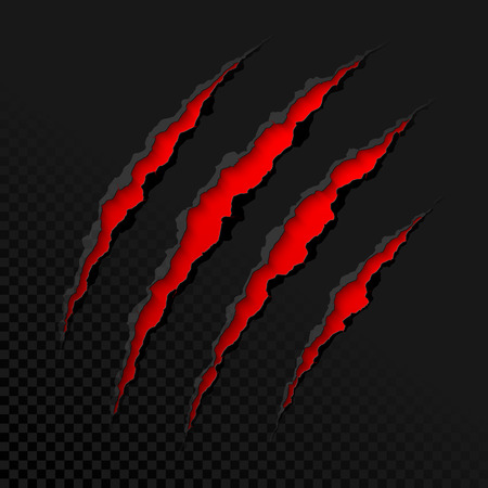 Claws scratches on transparent background