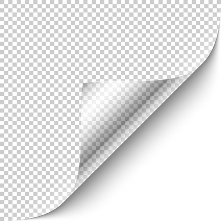 info: Curled corner with shadow on transparent background