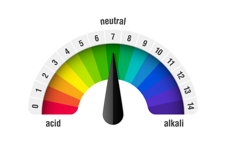 pH value scale meter for acid and alkaline solutions, acid-base balance infographic vector illustration.