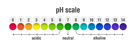 Tabla de escala de valores de pH para soluciones ácidas y alcalinas, ilustración vectorial infográfica de equilibrio ácido-base.