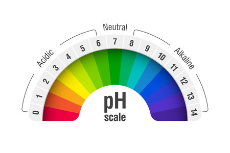 pH value scale chart for acid and alkaline solutions, acid-base balance infographic vector illustration.