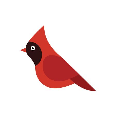 Cardinal bird cartoon vector on a white