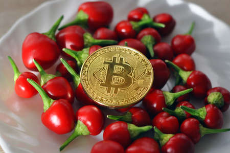 Golden bitcoin and red pepper on a white plate. Eating, Finance