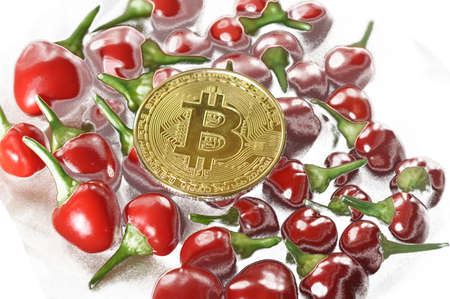 Golden bitcoin and red pepper on a white background. Abstraction Stock Photo