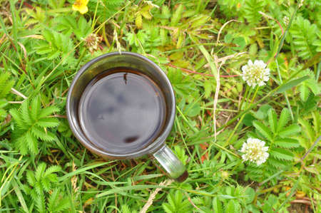 A cup of hot herbal tea in meadow herbs. Summer sunny day, outdoor recreation 版權商用圖片