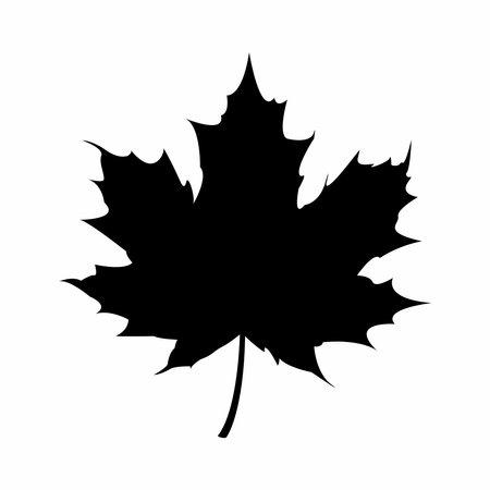 Maple leaf icon isolated on the white background. Design element. Vector flat illustration. Illustration