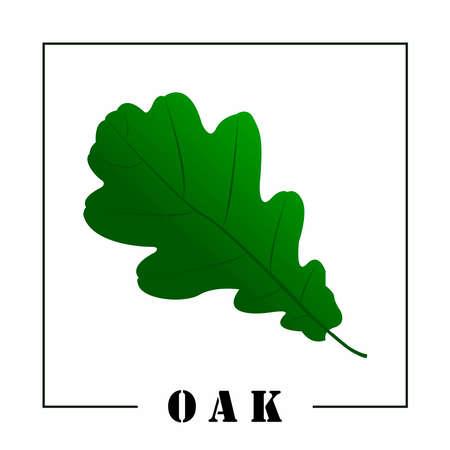 Green oak leaf and the inscription oak.