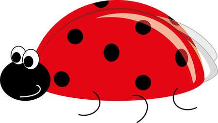 ladybug: ladybug Illustration