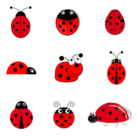 set of funny small ladybugs Vector
