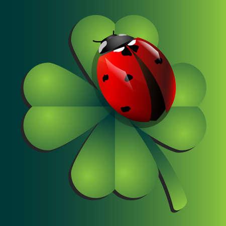 red clover: Ladybug on clover Illustration