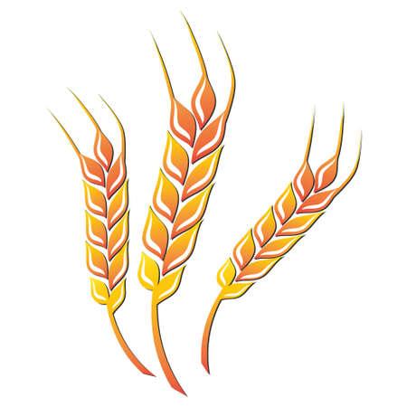 fu�sohle: Weizen farbigen Symbol auf wei�em Hintergrund. Vektor-Illustration