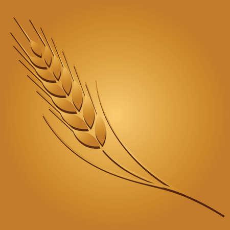 fu�sohle: Weizen farbiges Bild auf goldenem Hintergrund. Vektor-Illustration