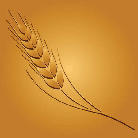 plantar: Wheat colored image on golden background. Vector illustration