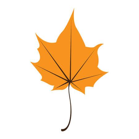 Orange maple leaf isolated on white background Illustration