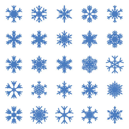 Set of different winter snowflakes Vector illustration.