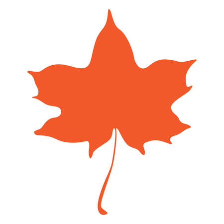 Orange maple leaf isolated on white background Illustration