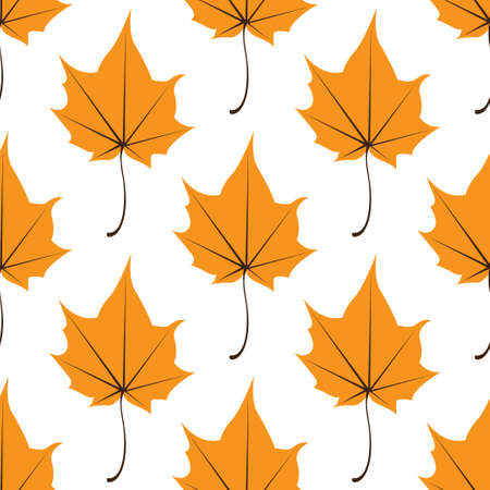 Maple leaves seamless vector white orange art background. Vector illustration Illustration