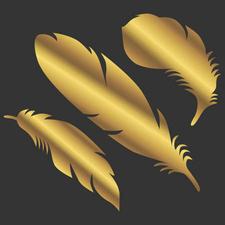 Art golden color feathers sign object symbol