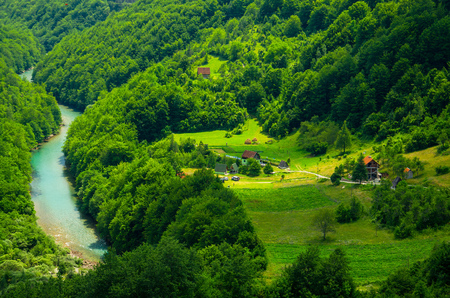 Small village houses in green forest near Tara river gorge canyon, top view from Durdevica Tara Bridge, Montenegro