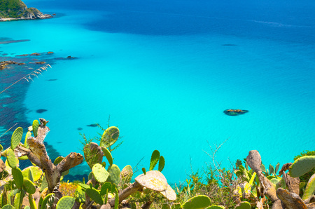 Top view of turquoise azure blue sea water from cliffs platform with cactus plants foreground, Cape Capo Vaticano, Calabria, Southern Italy