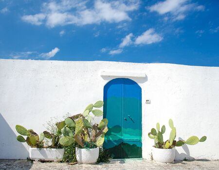 Blue door with cactus and white wall in the town of Ostuni with white buildings in Puglia Apulia region, Southern Italy Reklamní fotografie