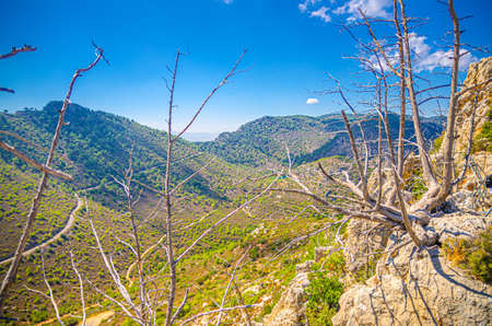 Kyrenia Girne mountains from medieval Saint Hilarion Castle, withered dried trees foreground, blue sky white clouds in sunny day, Northern Cyprus