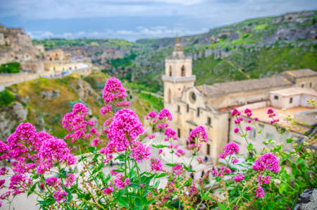 Red rose flowers and blurred background view of Church Chiesa San Pietro Caveoso, canyon and ravine with caves in historical center old ancient town Sassi di Matera, Basilicata, Southern Italy 免版税图像