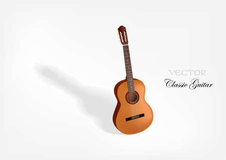 fretboard: Classic acoustic guitar  Vector background