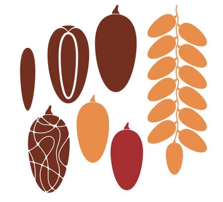 fruta tropical: Fruta de la fecha