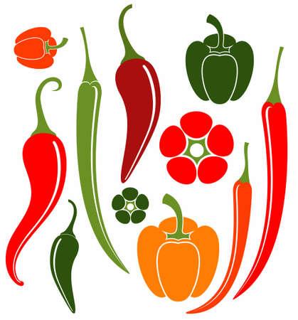 red chili pepper: Pepper Illustration