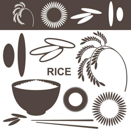Rice  Set Vector