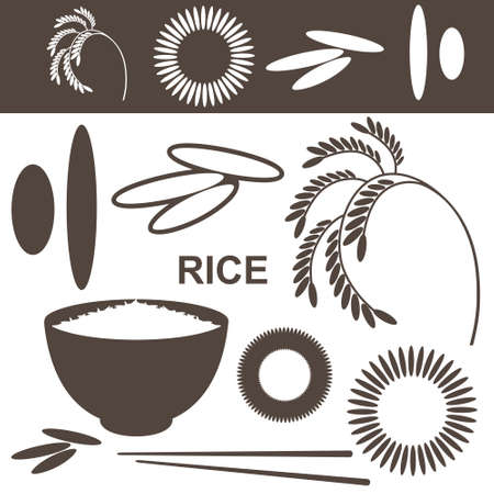 cereal plant: Rice  Set