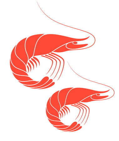 Shrimp Stock Vector - 30835409