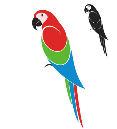 macaw parrot: Parrot  Illustration