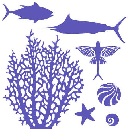 Reef Illustration