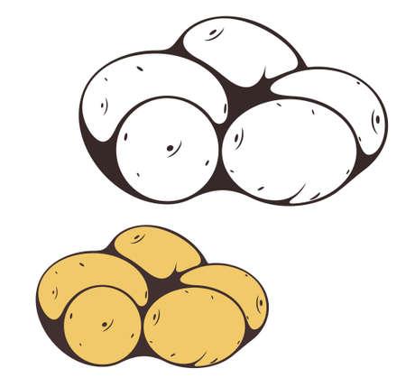 raw potato: Potato Illustration