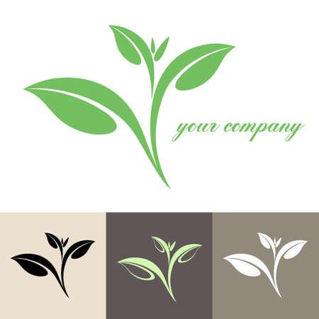 tea leaf: Tea  Illustration