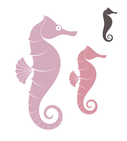 Sea Horse illustratie